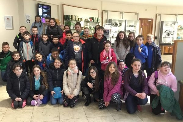 Ulster American Folk Park Year 7 and Class B