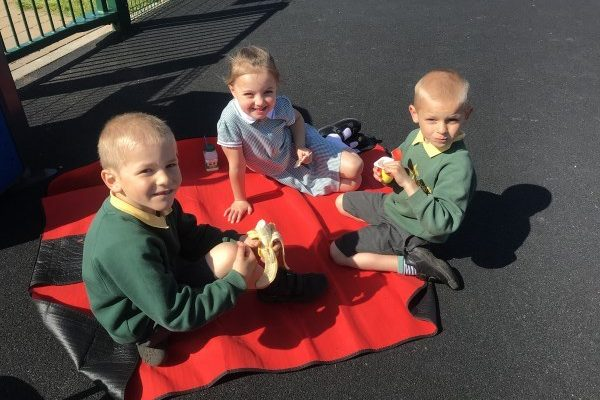 Year 1 And 2 Enjoy the Sunshine in Megaw Park