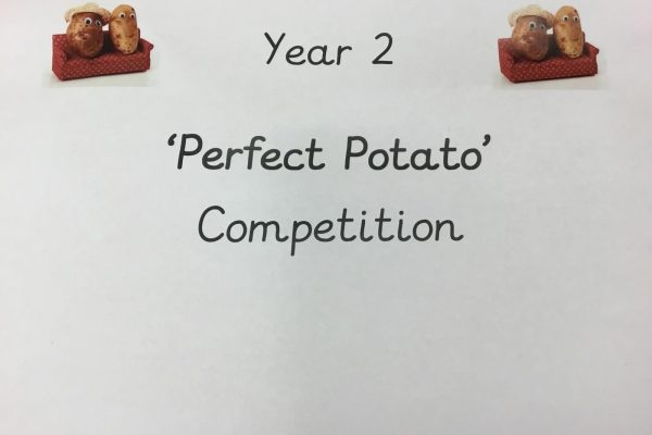 Year 2 'Perfect Potato' Competition